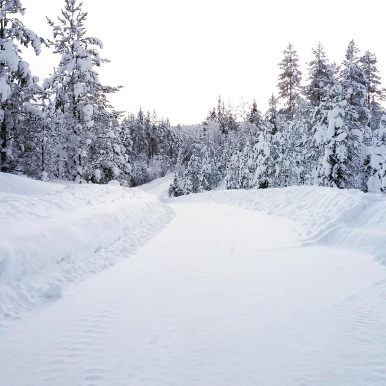 WRC: Συνέχεια του Πρωταθλήματος με Arctic Rally Φινλανδίας
